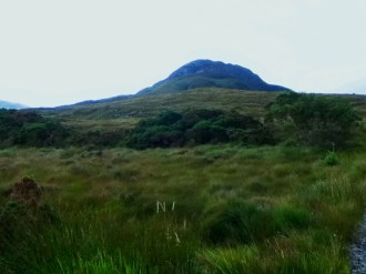 Diamont Hill, Connemara National Park, Co. Galway