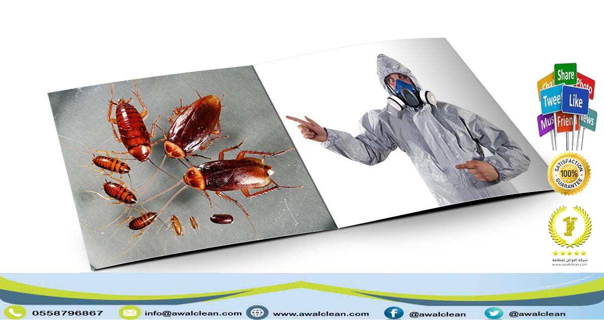 متخصص مكافحة حشرات