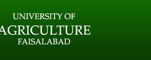 University of Agriculture Faisalabad admission 2016-17