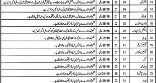 latest jobs in sahiwal