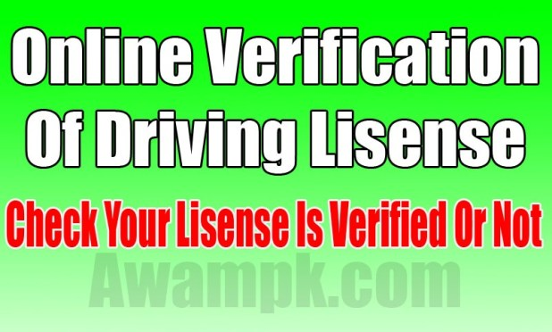 online verification of driving lisense