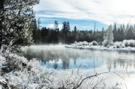Winter hunting, Oregon 2102.