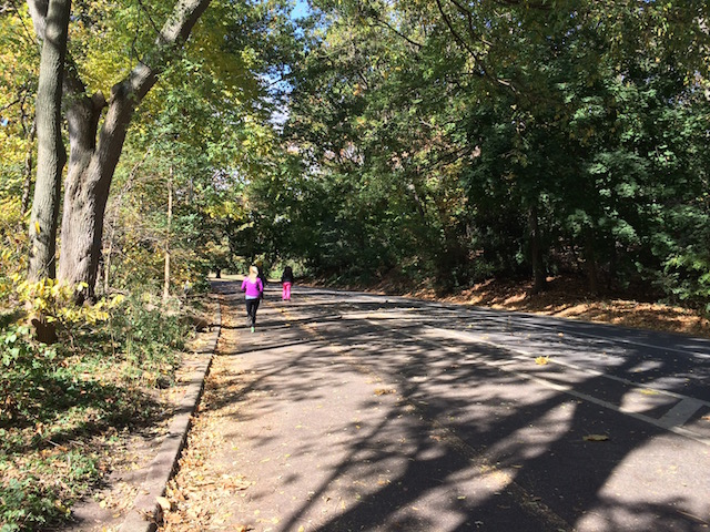 Central Park and Prospect Park have plenty of scenic running trails.