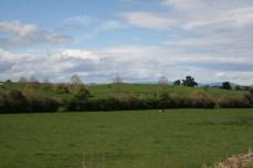 scenic railway view field