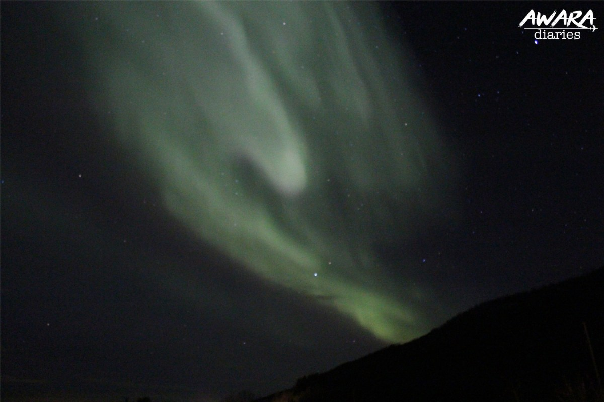 The Northern Lights Night 2