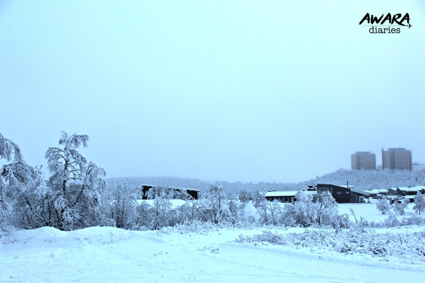 There is a free bus service between Kiruna train station & city center.