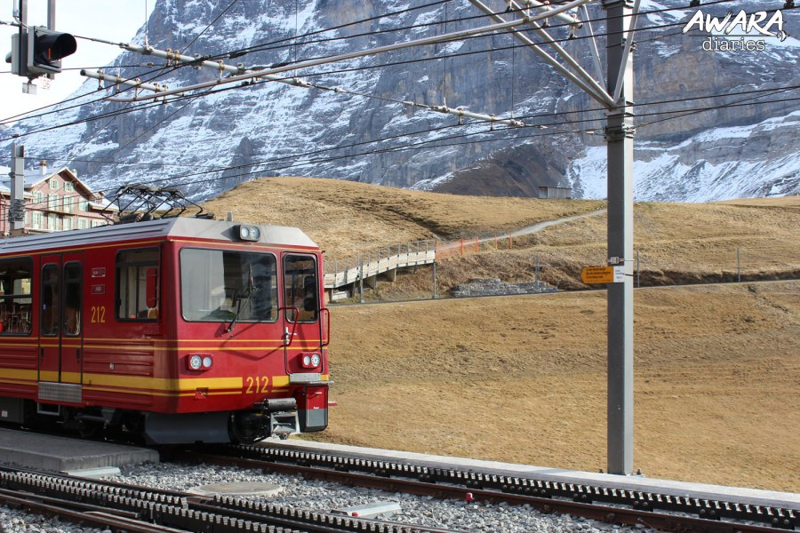 Jungfraujoch The Train Journey