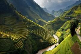 Complete Guide To Get Vietnam Visa On Arrival