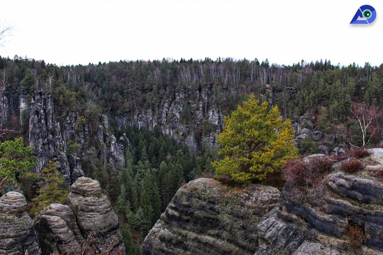 Day Trip From Prague | Saxon National Park
