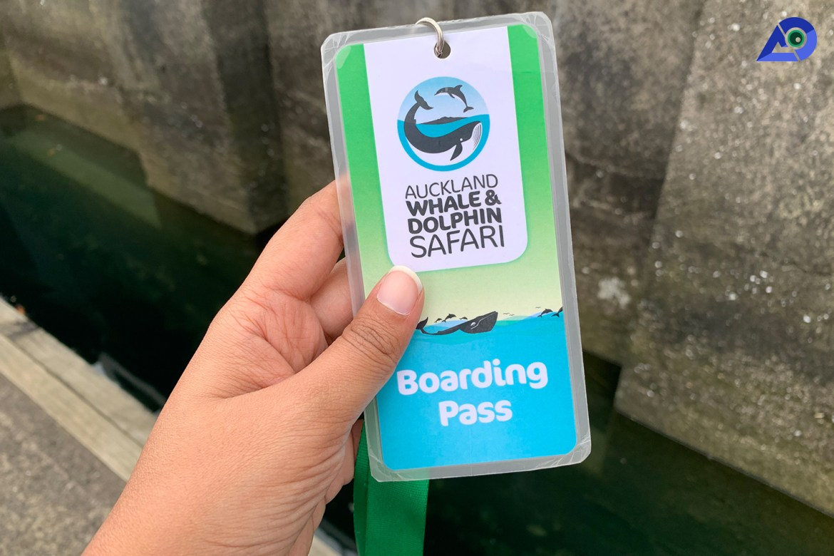 Boarding Pass Auckland Whale And Dolphin Safari