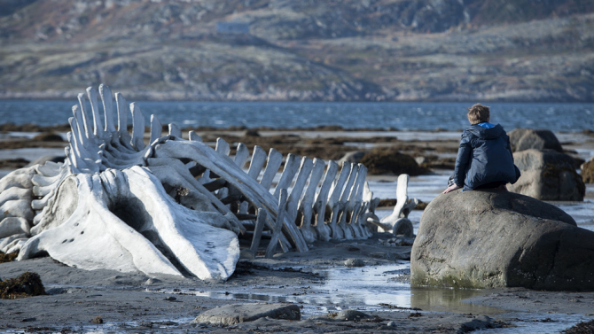 Russia's Leviathan, one of nine films selected to compete for a 2015 Foreign Language Film Oscar nomination