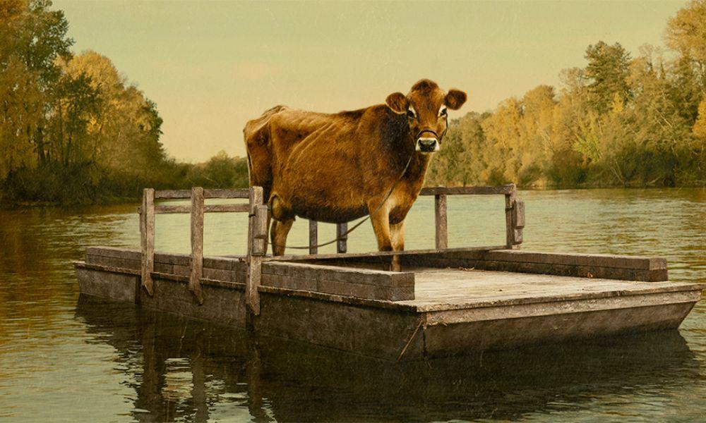 first-cow-still-1-1
