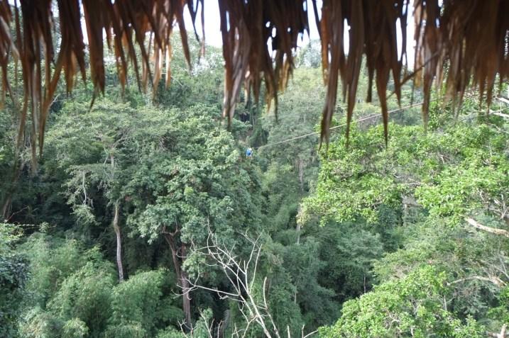 Ziplinning in jungle