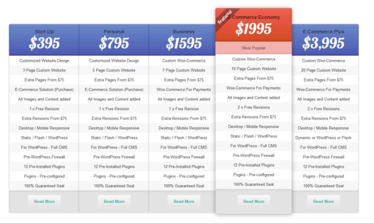 """Awardwinningword-press.com Website Design Options"""