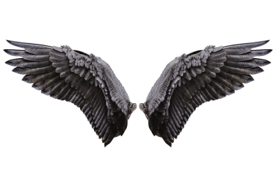 What Did You Do with the Wings? (or, Why Does Getting Rid of the Wings Make the Enneagram More Accurate AND Easier to Use?)