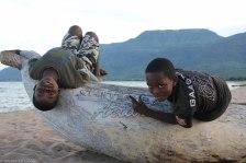 Chitimba