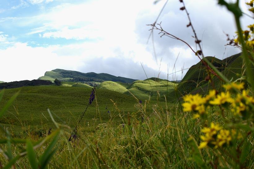 DSC 0357 1 - Nagaland Tourism – Complete Nagaland Travel Guide