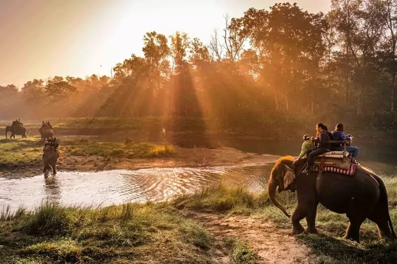 Chitwan - 10 Destinations to visit in upcoming visit Nepal 2020