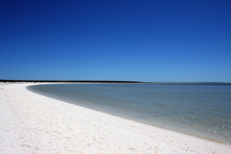 Westaustralien Roadtrip Perth Exmouth Shell Beach