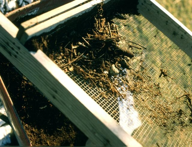 compost-screen