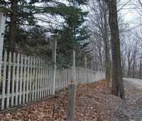 just saying no to deer, with fencing