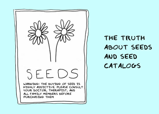 the_truth_about_seeds