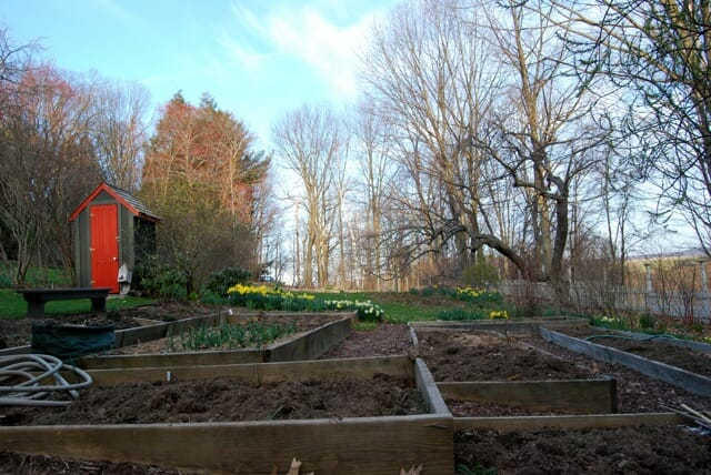 vegetable-beds-prepped