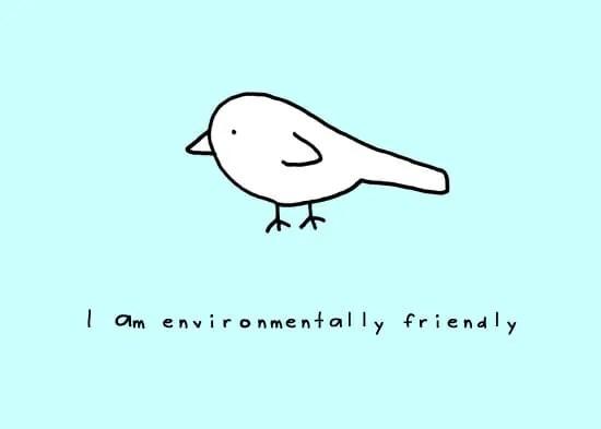 bird-copyright-andre-jordan.jpg