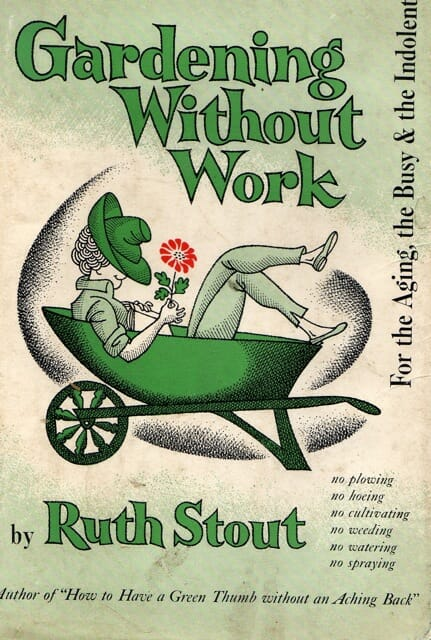 stout cover