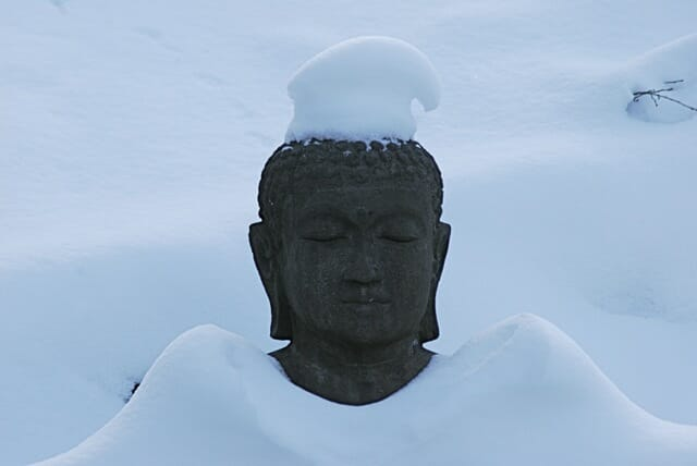 buddha cap 2