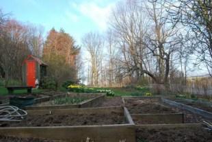 veg-garden-prep