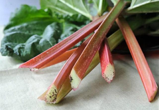 slender rhubarb spears
