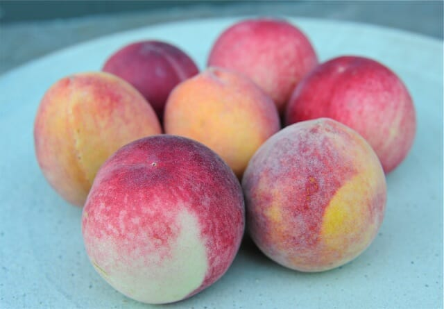 peaches for freezing
