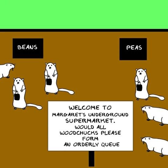 doodle by Andre Jordan: woodchucks in the garden