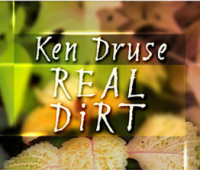 rocks, and rolling along: a chat with ken druse