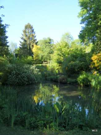 across-the-pond-in-may-ca72e2bb2d1a500a97addb78e34037b68cbd644c
