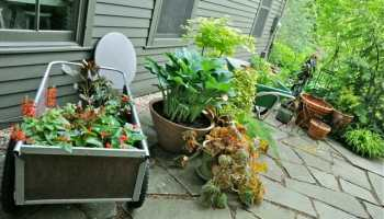 Soil saving tricks for planting big pots a way to garden missed the workshop container garden 101 workwithnaturefo