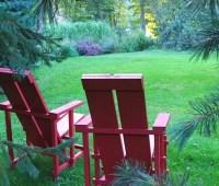my open-garden day august 18: lecture by ken druse, plant sale by broken arrow nursery