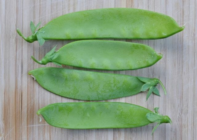 'Schweizer Riesen' heirloom Swiss snow pea
