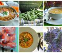 Garden-to-freezer soup recipes.