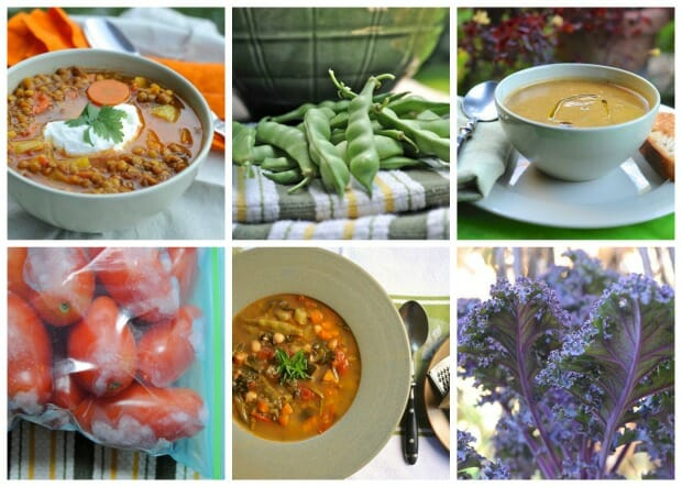 Garden-to-freezer soup recipes.