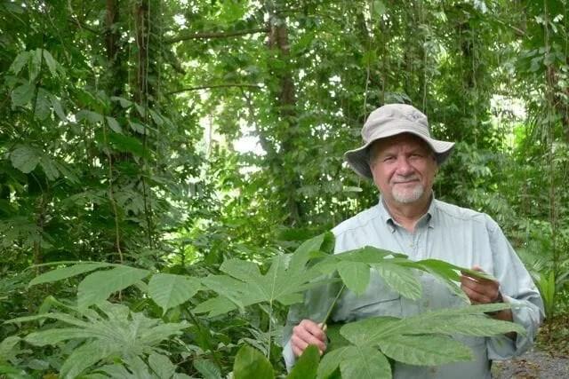 Dr. Michael Balick botanizing