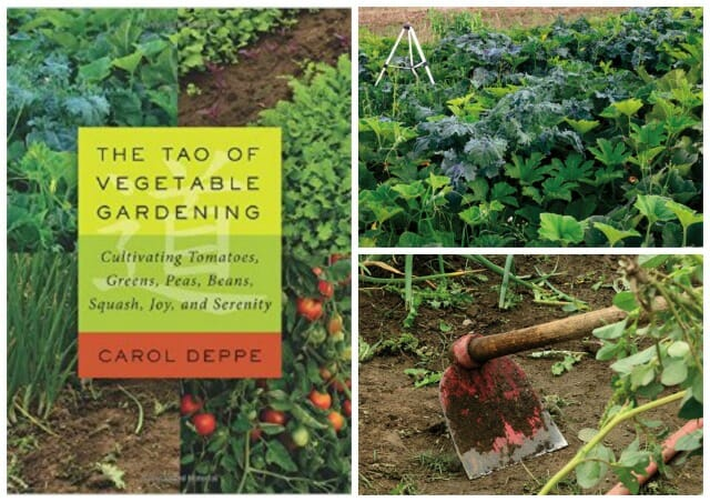 giveaway: \'the tao of vegetable gardening,\' with carol deppe - A Way ...