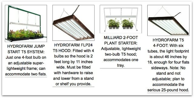 plant lights 2