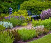 using native perennials in a formal border, with mt. cuba's travis beck