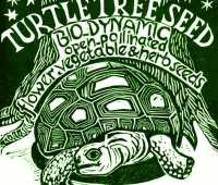 8th annual seedy saturday, march 24, at turtle tree