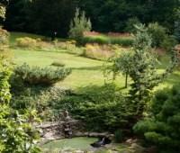 events: open day & claudia west, wildlife-garden workshop, seed saving, mushroom walk