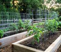 2017 garden recap and 2018 resolutions, with joe lamp'l