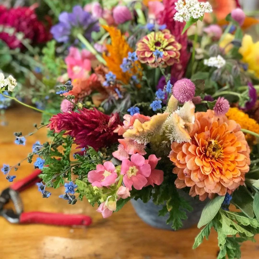 plant a cutting garden, with jenny elliott of tiny hearts farm