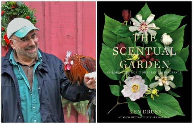 Top Garden Tools For Gifts Or For You With Ken Druse A Way